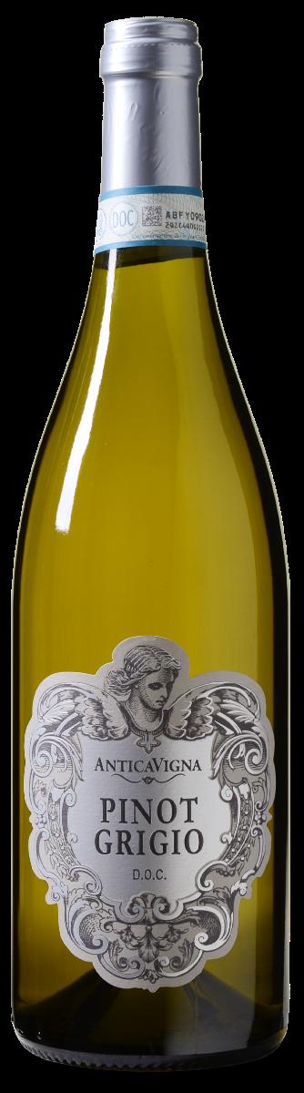 Antica Vigna Pinot Grigio delle Venezie DOC