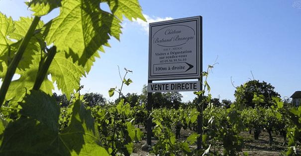 Wijnverhaal Chateau Bertrand Braneyre 2