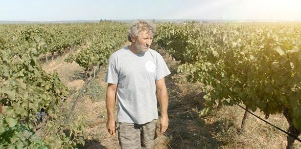 Wijnverhaal Domaine de Mon Pere Costieres de Nimes - 1