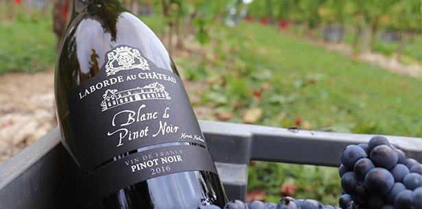 Wijnverhaal Herve Kerlann Blanc de Pinot Noir - 2