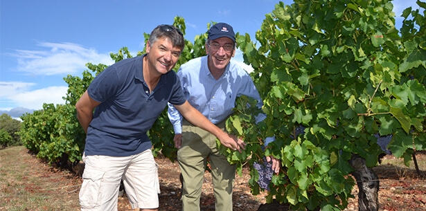 Wijnverhaal La Jasse Vieilles Vignes - 1