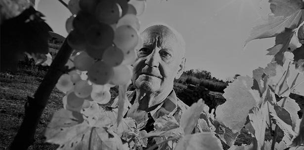 Wijnverhaal Las 75 - 1
