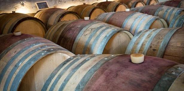 Wijnverhaal Le Blason de Terre Noire 1