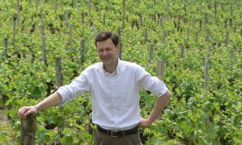 Wijnmaker Tournebrise
